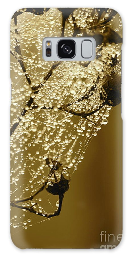 Galaxy S8 Case featuring the photograph Golden Globes by Carol Groenen