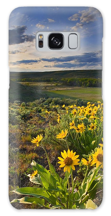Balsamroot Galaxy S8 Case featuring the photograph Golden Hills by Mike Dawson