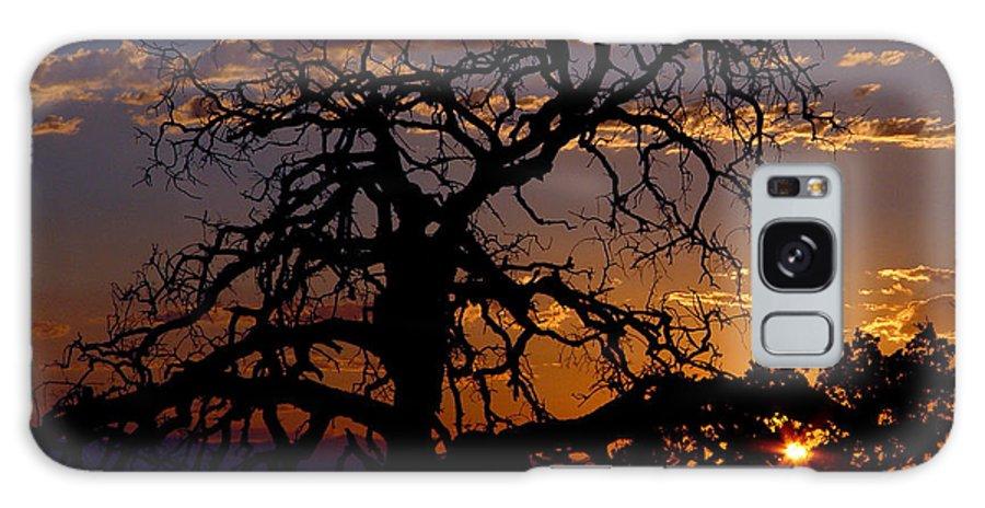 Sunset Galaxy S8 Case featuring the photograph Golden Hour by Peter Piatt
