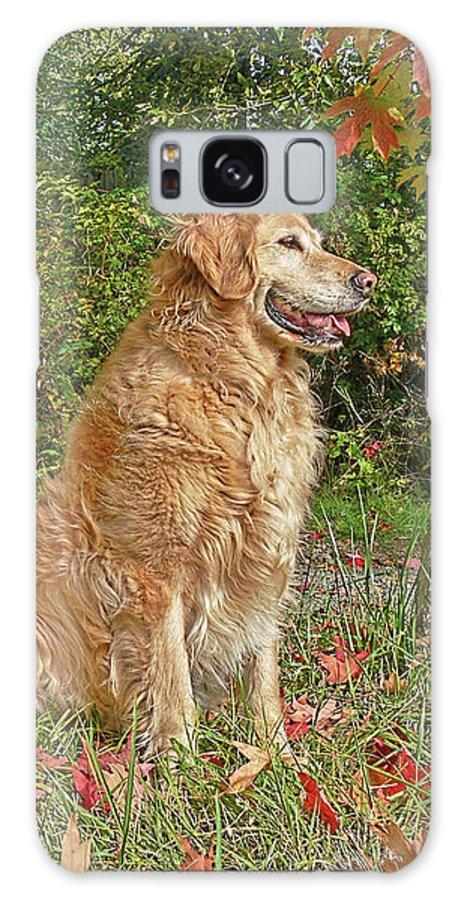Golden Retriever Galaxy S8 Case featuring the photograph Golden Retriever Dogs In Autumn by Jennie Marie Schell