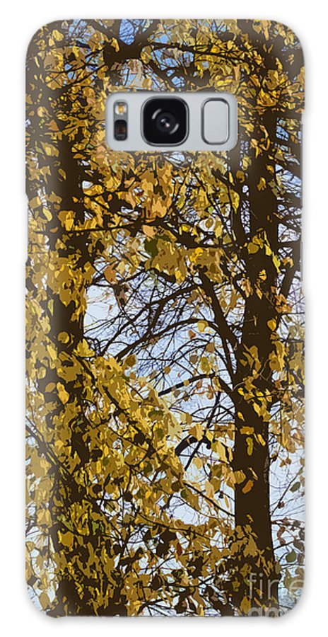 Autumn Galaxy S8 Case featuring the photograph Golden Tree 2 by Carol Lynch