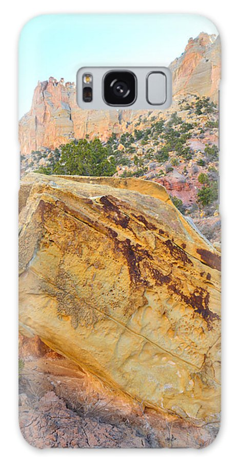 Grand Staircase Escalante National Monument Galaxy S8 Case featuring the photograph Golden Wash by Ray Mathis