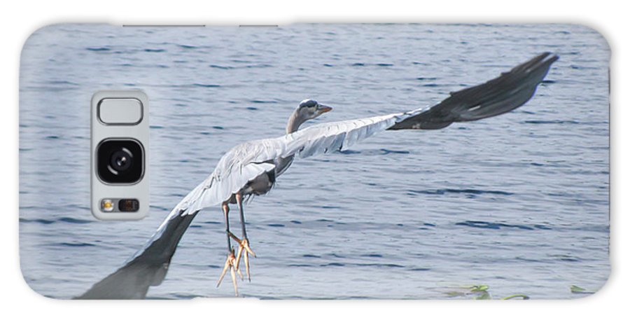 Great Blue Heron Galaxy S8 Case featuring the photograph Good Bye... by Zina Stromberg