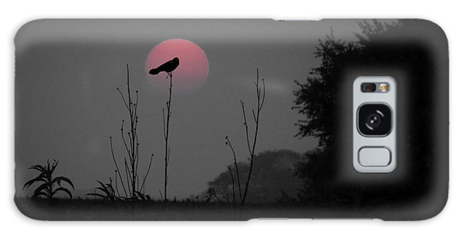 Sunset Galaxy S8 Case featuring the photograph Goodnight Mr. Red-winged Black Bird by Nicole Crabtree