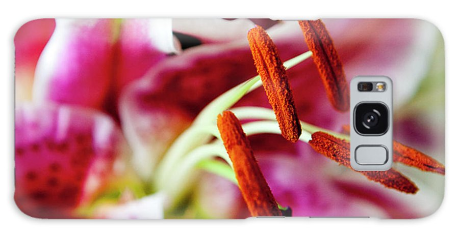 Flora Galaxy S8 Case featuring the photograph Graceful Lily Series 23 by Olga Smith