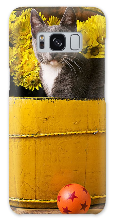 Kitten Galaxy S8 Case featuring the photograph Gray Kitten In Yellow Bucket by Garry Gay