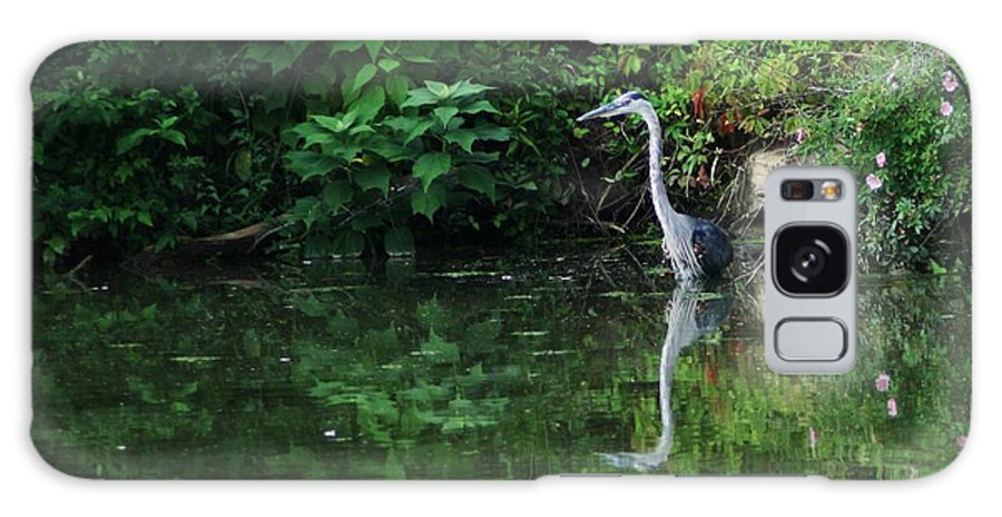 Lanscape Water Bird Crane Heron Blue Green Flowers Great Photograph Galaxy Case featuring the photograph Great Blue Heron Hunting Fish by Dawn Downour