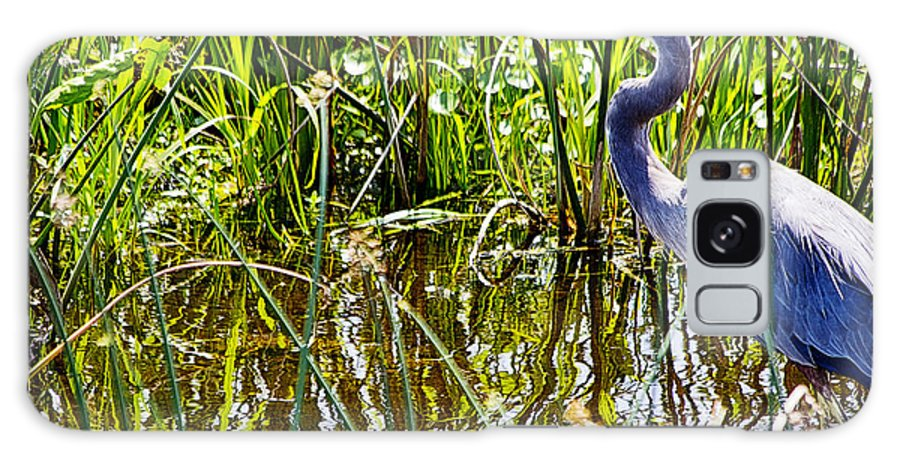 Great Blue Heron Galaxy S8 Case featuring the photograph Great Blue Heron In The Wetlands by Roger Wedegis