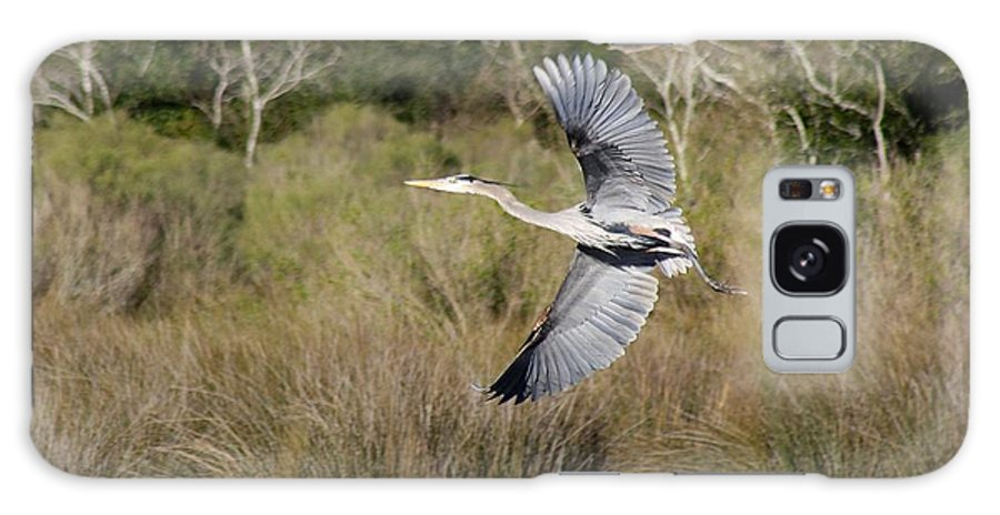 Bird Galaxy S8 Case featuring the photograph Great Blue Heron by Kristie Ford