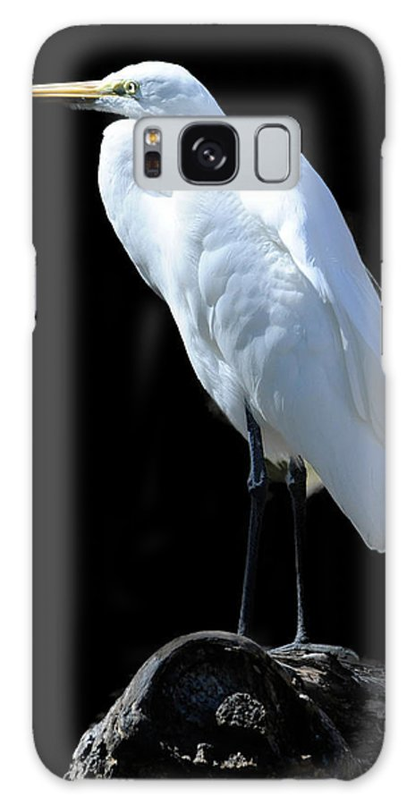 Great Egret Galaxy S8 Case featuring the photograph Great Egret by Keith Lovejoy