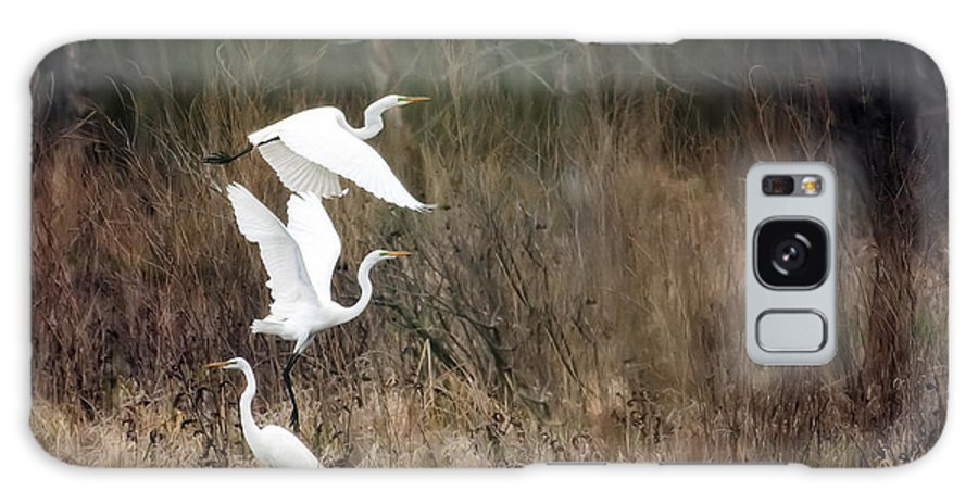 Bird Galaxy S8 Case featuring the photograph Great Egrets by Al Mueller