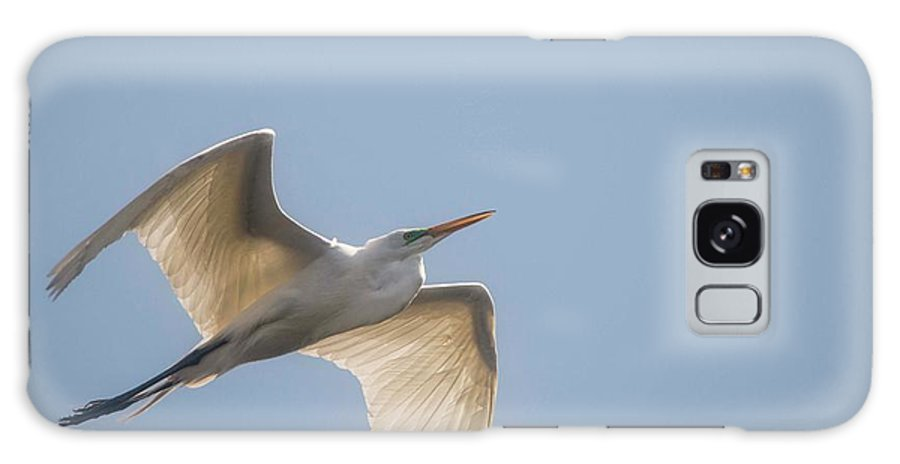 Egret Galaxy S8 Case featuring the photograph Great White Egret - 2 by David Bearden