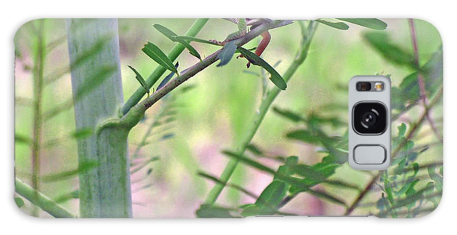 Anole Galaxy S8 Case featuring the photograph Green Anole by Kenneth Albin