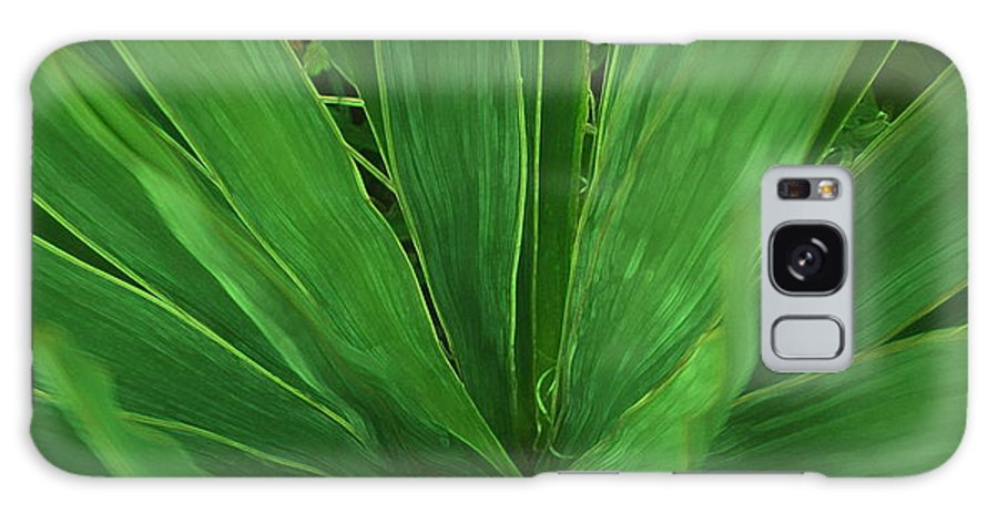 Green Plant Galaxy Case featuring the photograph Green Glow by Linda Sannuti