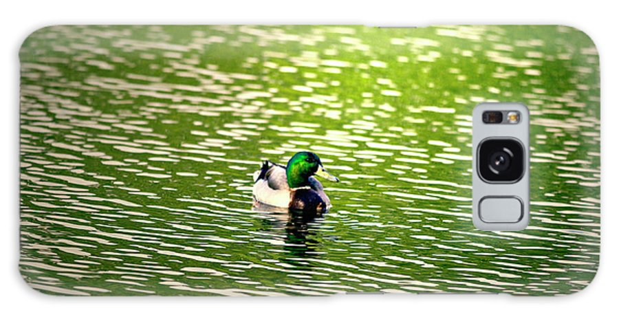 Mallard Galaxy S8 Case featuring the photograph Green Head by Scott Pellegrin