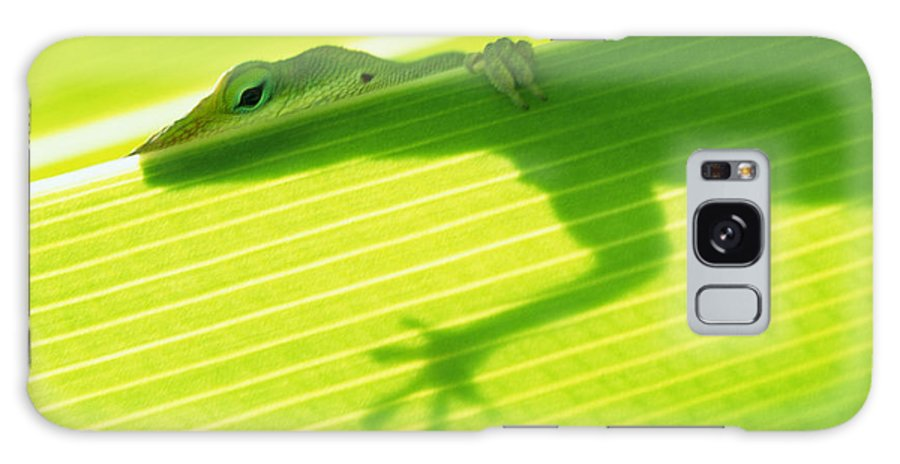 76-csw0115 Galaxy S8 Case featuring the photograph Green Lizard by Bill Brennan - Printscapes