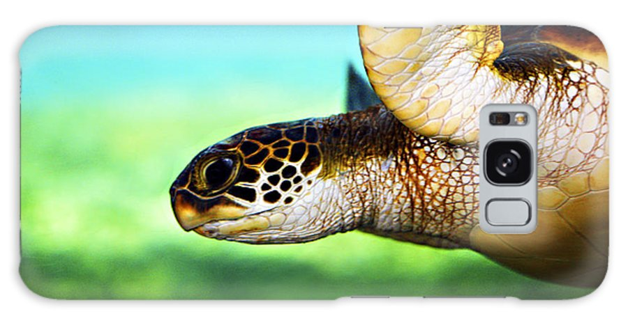 Green Galaxy Case featuring the photograph Green Sea Turtle by Marilyn Hunt