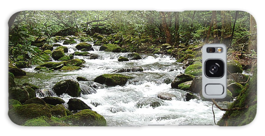 Smoky Mountains Galaxy S8 Case featuring the photograph Greenbrier River Scene 2 by Nancy Mueller