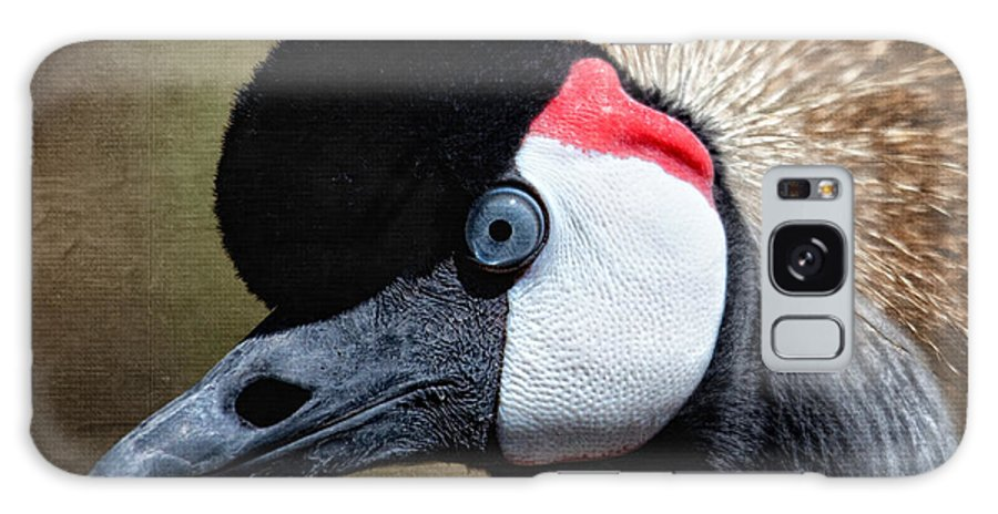 Grey - Crowned Crane Galaxy S8 Case featuring the photograph Grey - Crowned Crane by Al Mueller