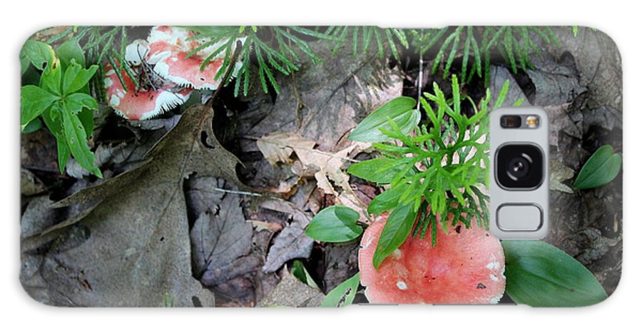 Res Galaxy S8 Case featuring the photograph Ground Pine And Fungi by Brian Lucia