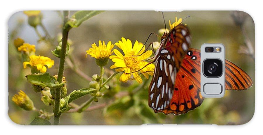 Gulf Fritillary Galaxy S8 Case featuring the photograph Gulf Fritillary Agraulis Vanillae Red Butterfly by Dustin K Ryan