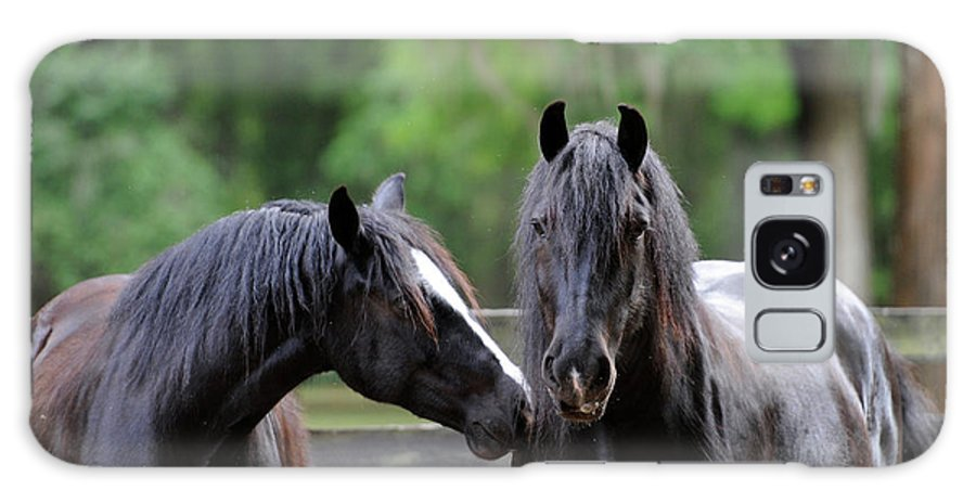 Gypsy Gold Farm Galaxy S8 Case featuring the photograph Gypsy Vanner Mares by Carien Schippers