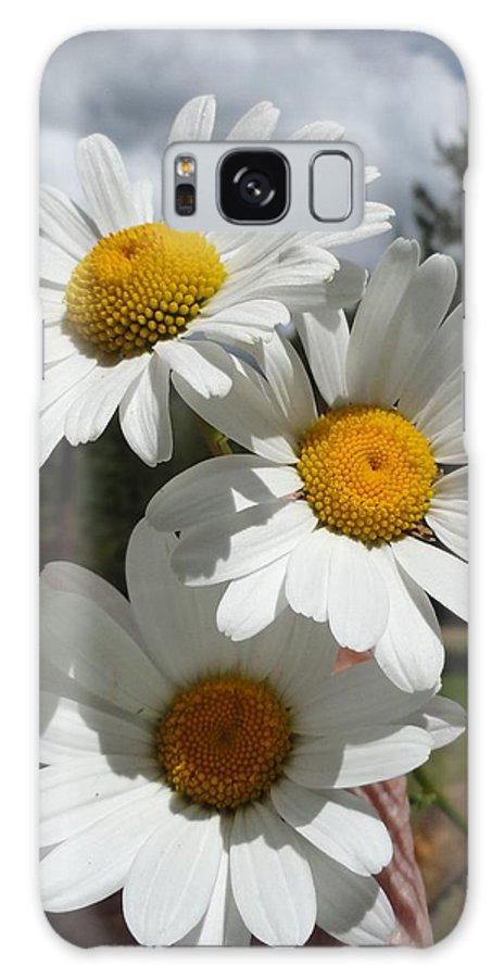 Flowers Galaxy S8 Case featuring the painting Handful Of Daisies by Carol Avants