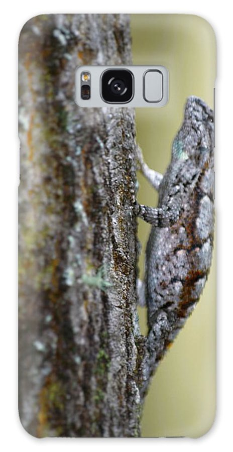 Reptile Galaxy S8 Case featuring the photograph Hanging by Jason Bellantoni