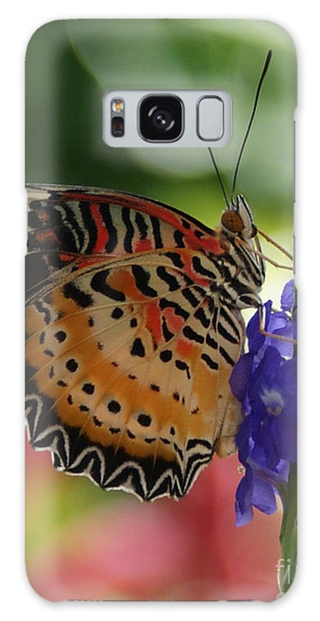 Butterfly Galaxy S8 Case featuring the photograph Hanging On by Shelley Jones