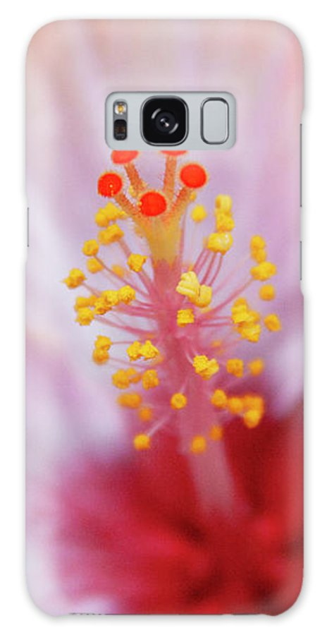 Floral Galaxy S8 Case featuring the photograph Happy Orange by Toni Hopper