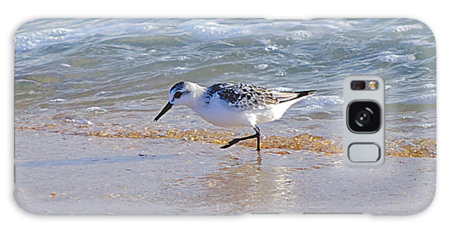 Sandpiper Galaxy S8 Case featuring the photograph Happy Sandpiper by Kenneth Albin