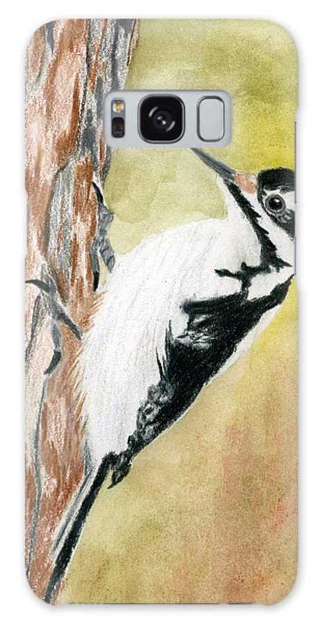 Woodpecker Galaxy S8 Case featuring the drawing Harry The Hairy Woodpecker by Rich Stedman