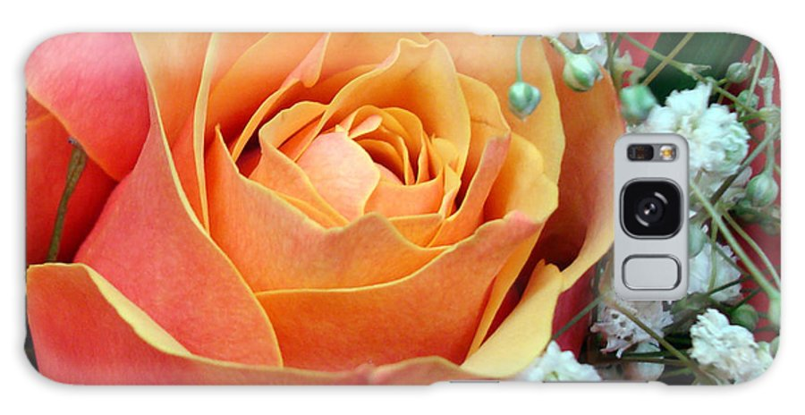 Kathy Bucari Galaxy Case featuring the photograph Have I Told You Lately That I Love You by Kathy Bucari