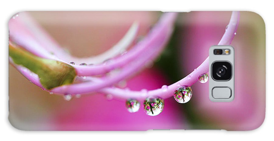 Raindrop Galaxy S8 Case featuring the photograph Hawaiin Rain Drops by Marilyn Hunt