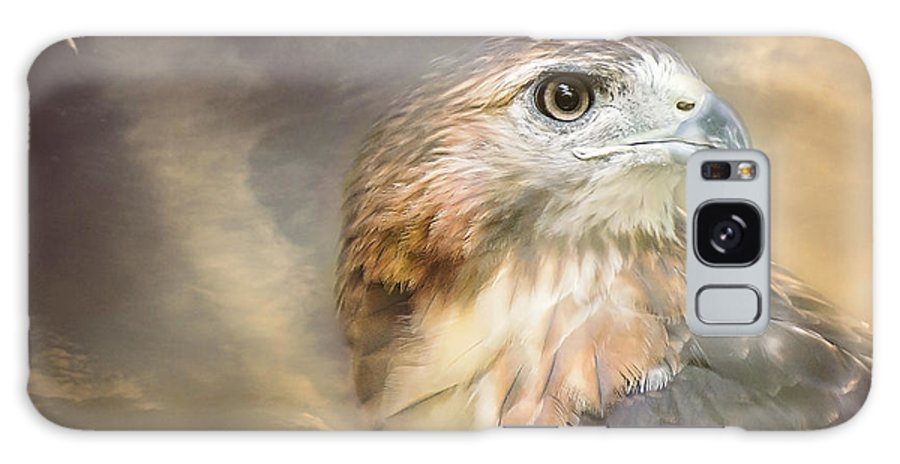 Red Tailed Hawk Galaxy S8 Case featuring the photograph Hawkeyed by Heather Applegate