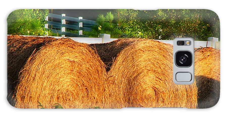 Landscape Galaxy S8 Case featuring the photograph Hay Bales by Todd Blanchard
