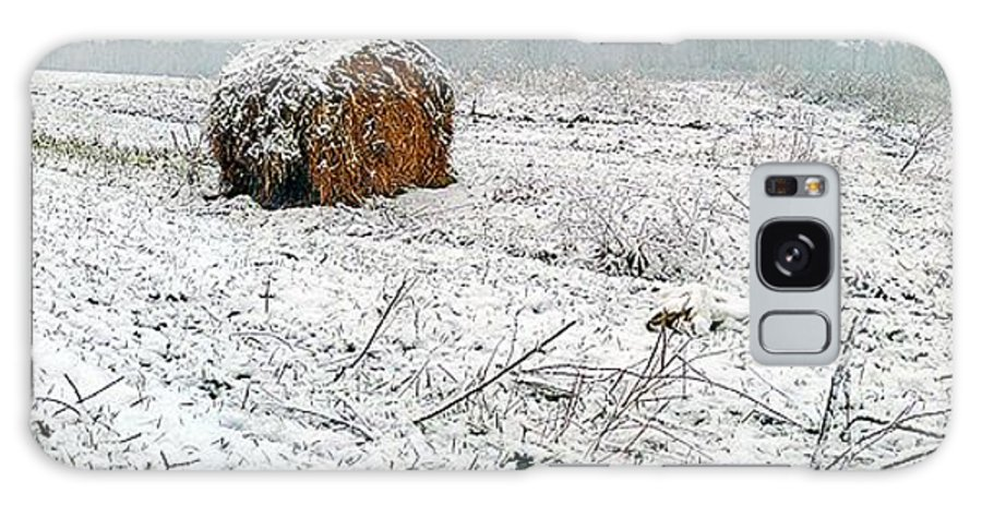 Winter Galaxy S8 Case featuring the photograph Hay. by Mihael Nollta