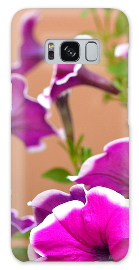 Flower Galaxy S8 Case featuring the photograph Hello Petunia by Corinne Rhode