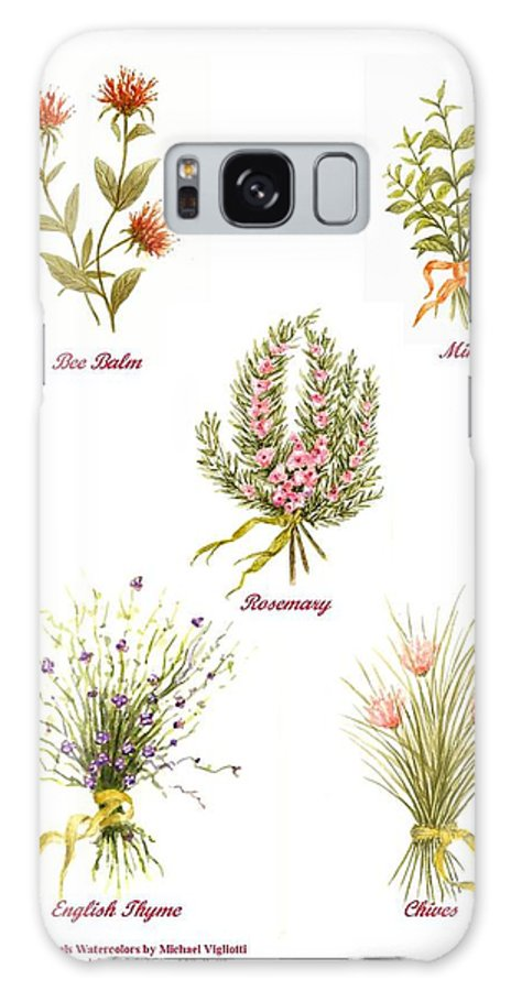 Herbs Galaxy S8 Case featuring the painting Herbs Montage Number One by Michael Vigliotti