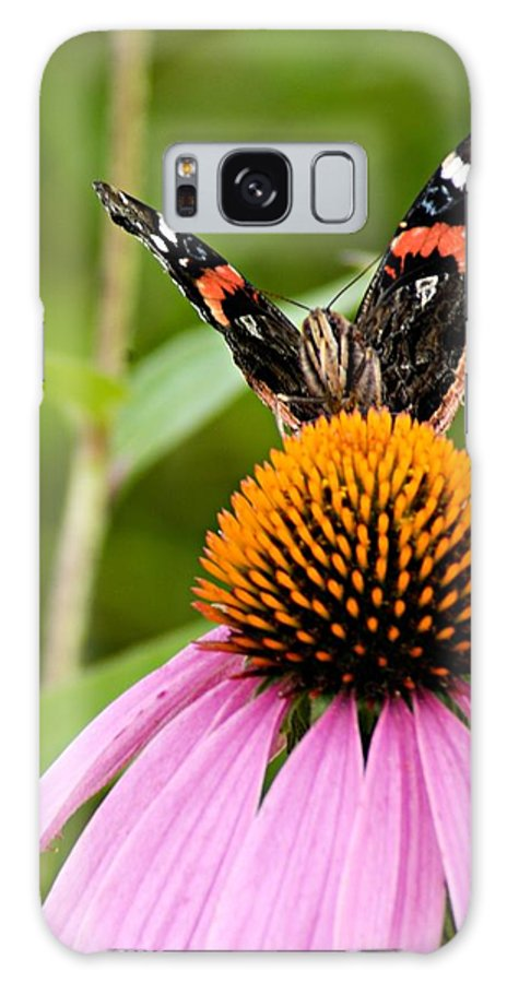 Photography Galaxy S8 Case featuring the photograph Here Is Looking At You by Larry Ricker