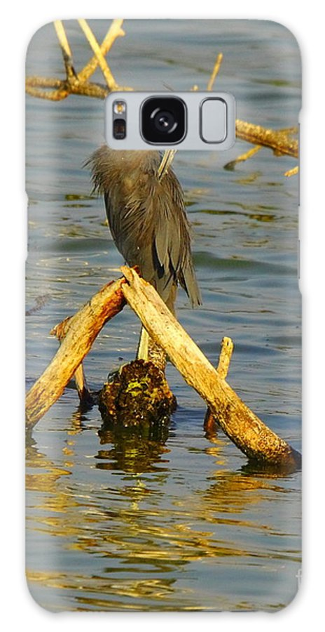 Nature Galaxy S8 Case featuring the photograph Heron And Turtle by Robert Frederick