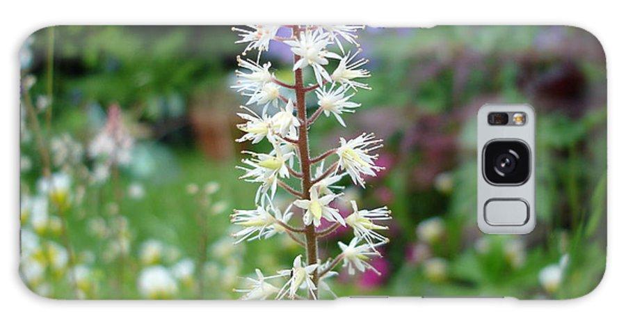 Flower Galaxy S8 Case featuring the photograph Heucharella - Fairy Bells by Susan Baker