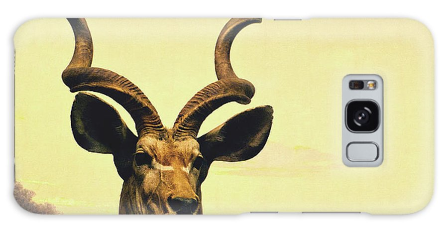 Animal Galaxy S8 Case featuring the photograph Hi, I Am Kudu by Zena Zero