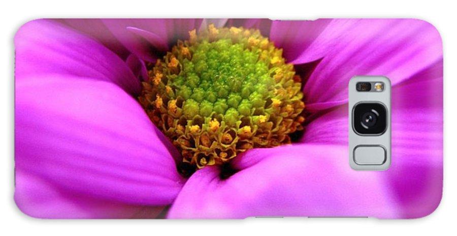 Flower Galaxy S8 Case featuring the photograph Hidden Inside by Rhonda Barrett