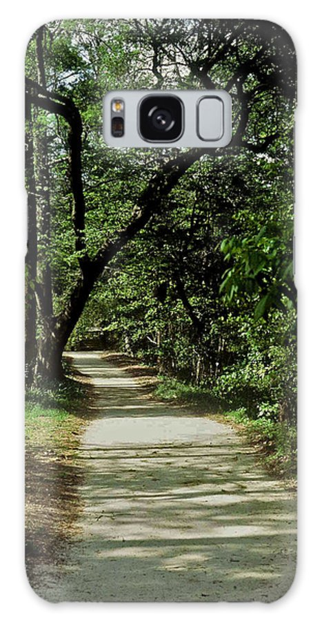 Path Galaxy S8 Case featuring the photograph Hidden Path by Gary Wonning