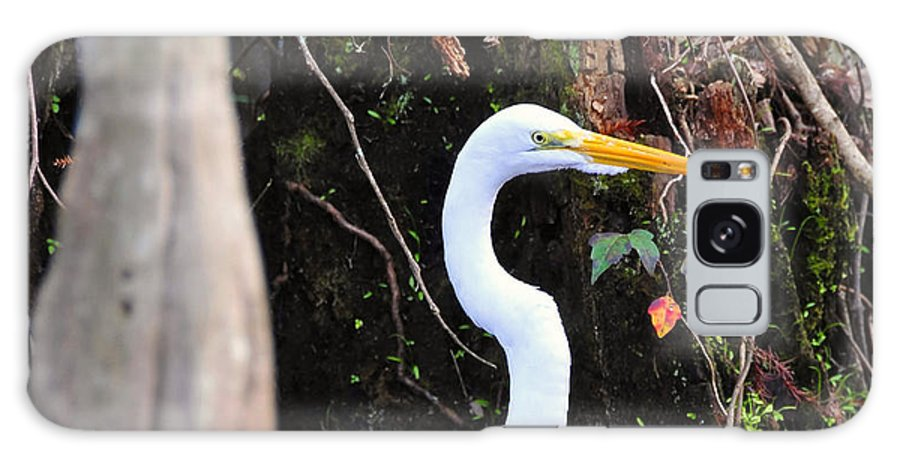 Egret Galaxy S8 Case featuring the photograph Hiding Egret by David Lee Thompson