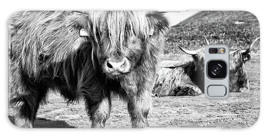 Calf Galaxy S8 Case featuring the photograph Highland Cattle by Janet Burdon