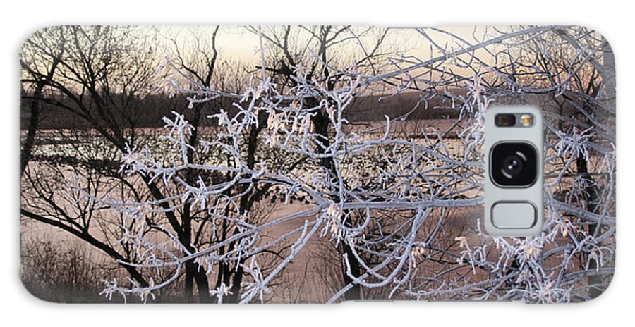 Hoar Frost Trees Lake Water Autumn Winter Ice White Cold Galaxy S8 Case featuring the photograph Hoar Frost by Andrea Lawrence