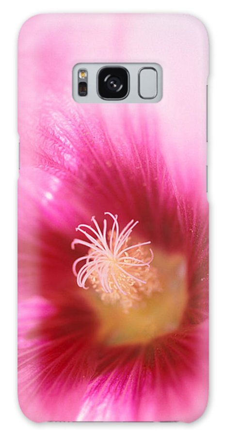 Florals Galaxy S8 Case featuring the photograph Hollyhock Closeup by Kathy Yates