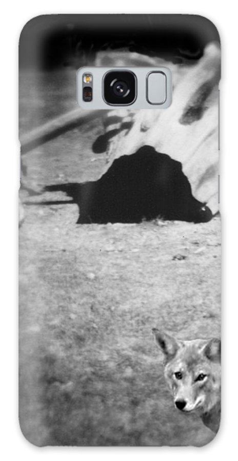 Yosemite Galaxy Case featuring the photograph Homage To Josef Beuys by Ann Tracy